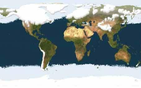 Ultima glaciacion hace 80.000 años