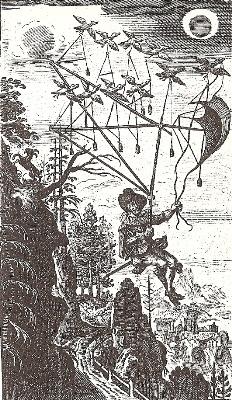 Fliegende_Wandersmann_1659